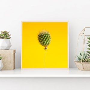 minimal_design_kaktusz_lufi_2
